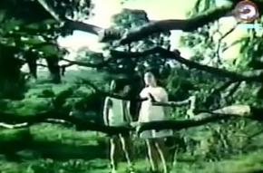 Darna and rub-down the Giants (1973)